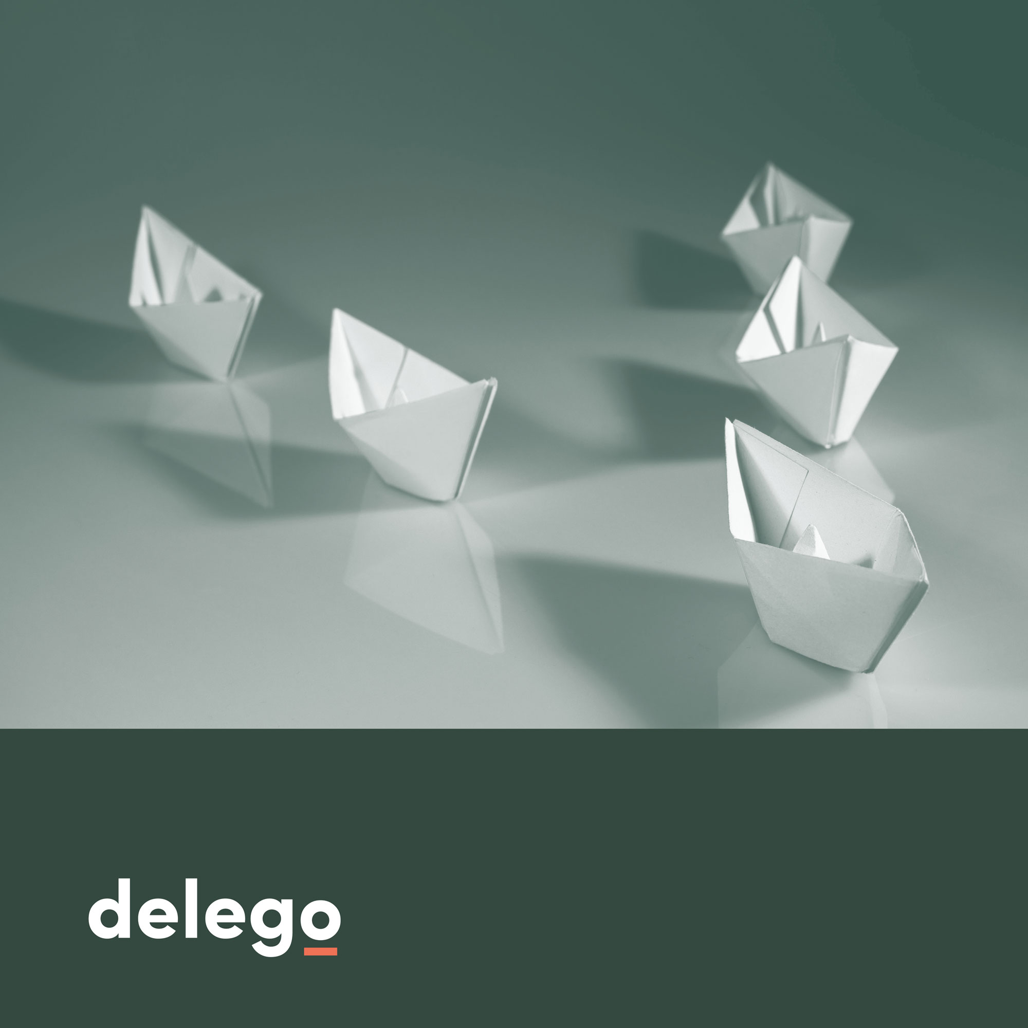 Delego_12
